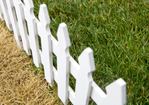 grass-greener-fence-iStock_000011126842Small-resized-600.jpg